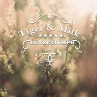 Entretiempo de TIGER AND MILK