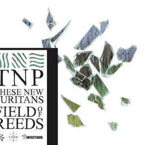 THESE NEW PURITANS. Field of Reeds, nº41 Popout de 2013